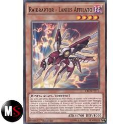 RAIDRAPTOR LANIUS AFFILATO