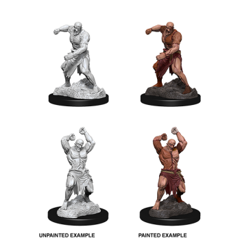 D&D NOLZU'S MARVELOUS MINIATURES: FLESH GOLEM