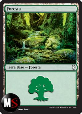 FORESTA (VERSIONE 4)