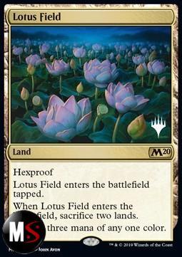 CAMPO DI LOTO - PROMO - EXTRA CARD FOIL