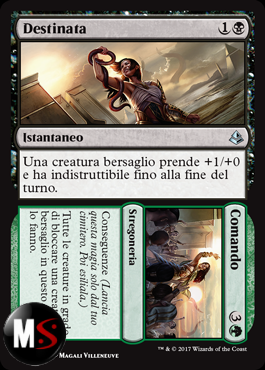 DESTINATA / COMANDO