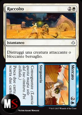 RACCOLTO / / MERCATO