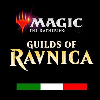 GILDE DI RAVNICA - 6 BOX (UNA CASSA) ITALIANO