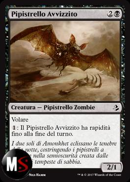 PIPISTRELLO AVVIZZITO
