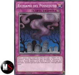 RICHIAMO DEL POSSEDUTO