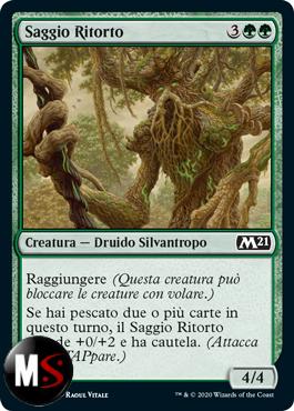 SAGGIO RITORTO