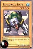 TARTARUGA-TIGRE